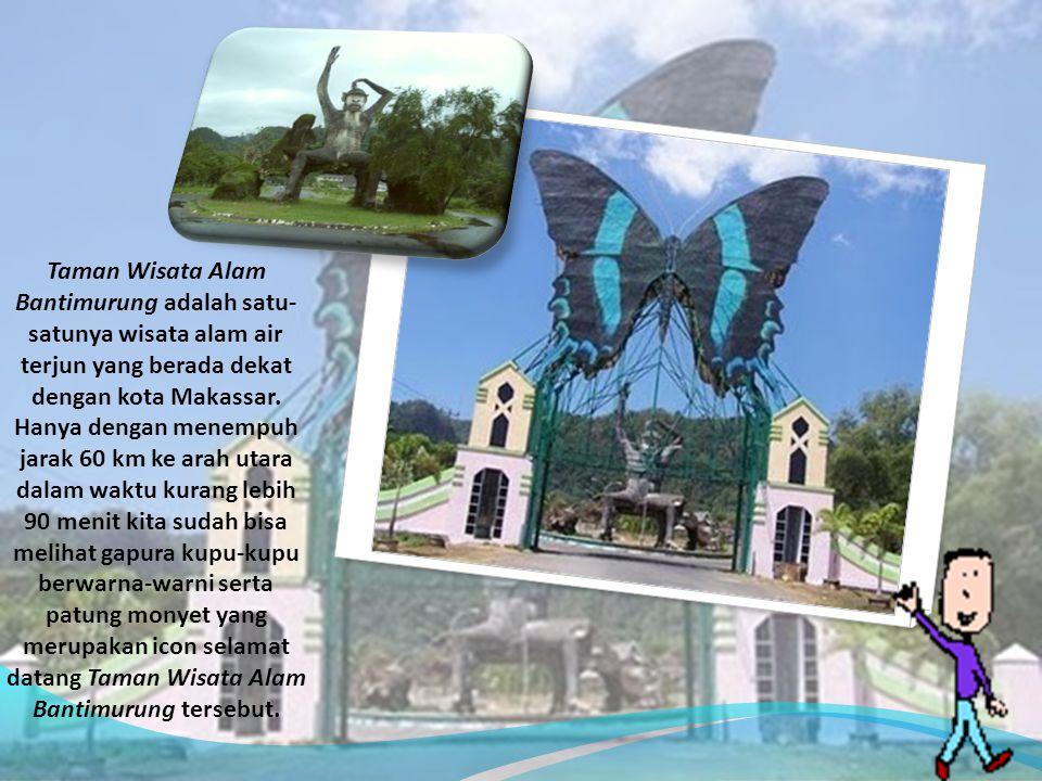 Taman Wisata Alam Bantimurung adalah satu-satunya wisata alam air terjun yang berada dekat dengan kota Makassar.