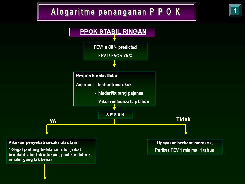 Alogaritme penanganan P P O K