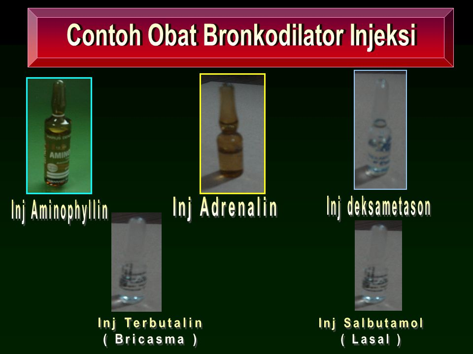 Contoh Obat Bronkodilator Injeksi