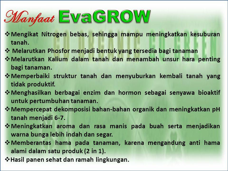 Manfaat Mengikat Nitrogen bebas, sehingga mampu meningkatkan kesuburan tanah. Melarutkan Phosfor menjadi bentuk yang tersedia bagi tanaman.