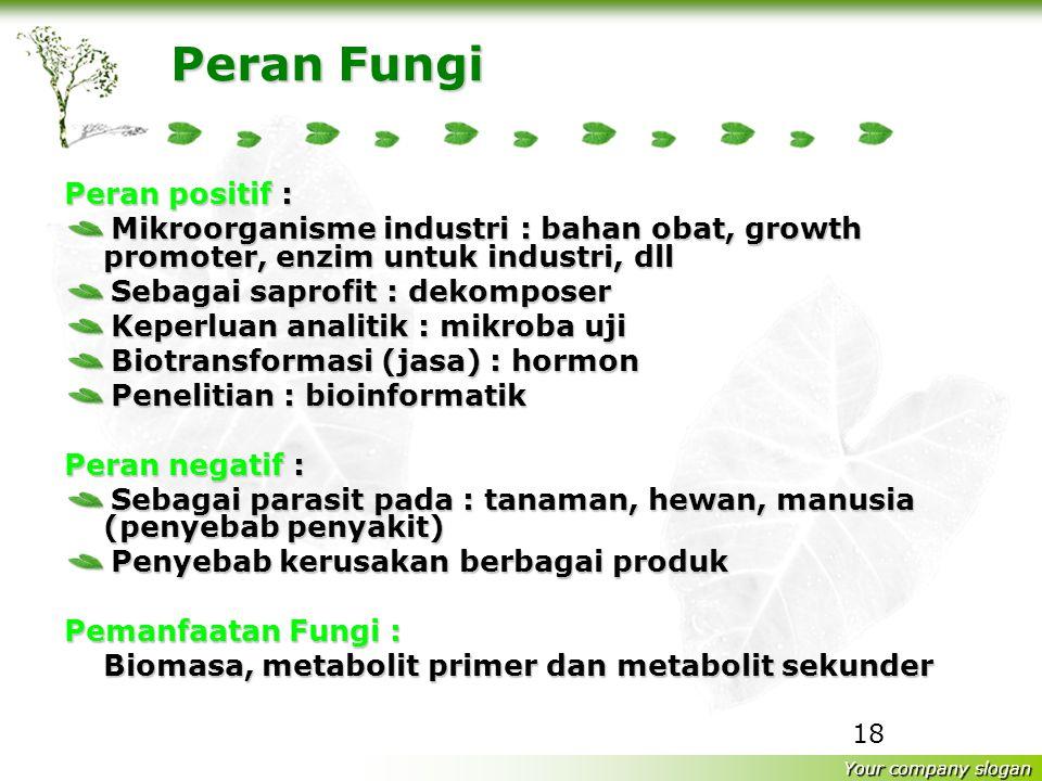 Peran Fungi Peran positif :
