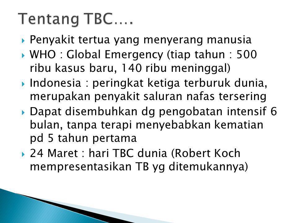 Tentang TBC…. Penyakit tertua yang menyerang manusia