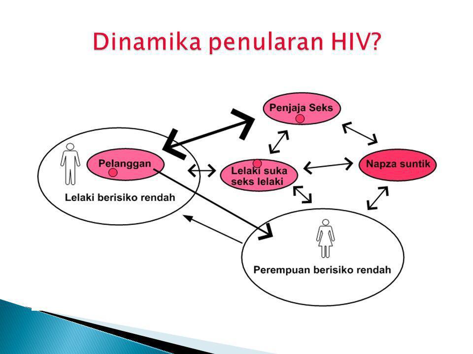 Dinamika penularan HIV