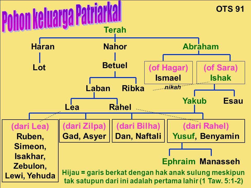 Patriarchal Family Tree