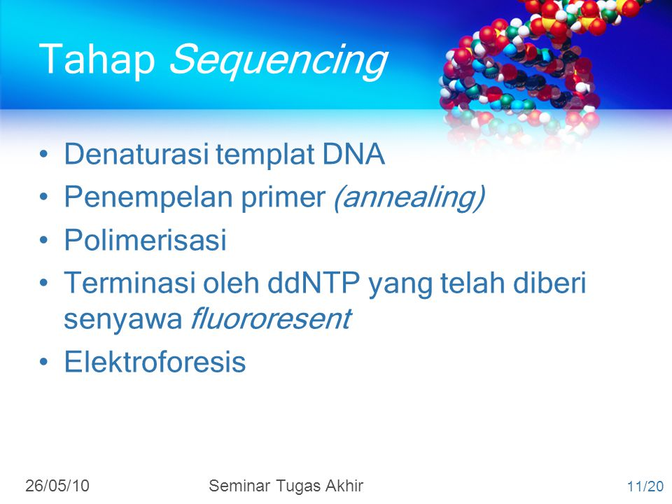 Tahap Sequencing Denaturasi templat DNA Penempelan primer (annealing)