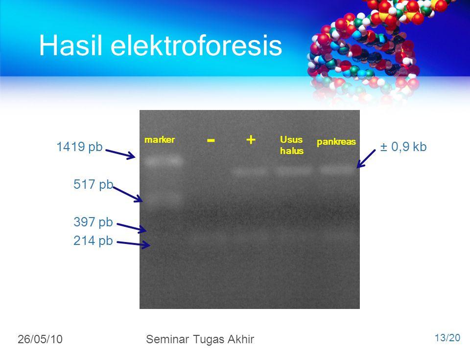 Hasil elektroforesis - 26/05/10 Seminar Tugas Akhir 1419 pb ± 0,9 kb