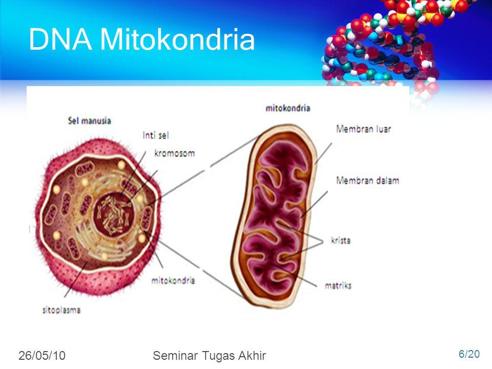 4/7/2017 DNA Mitokondria 26/05/10 Seminar Tugas Akhir 6/20