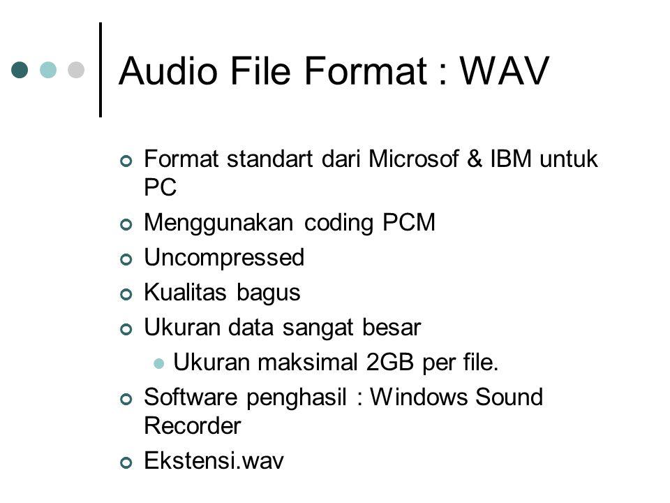 Audio File Format : WAV Format standart dari Microsof & IBM untuk PC
