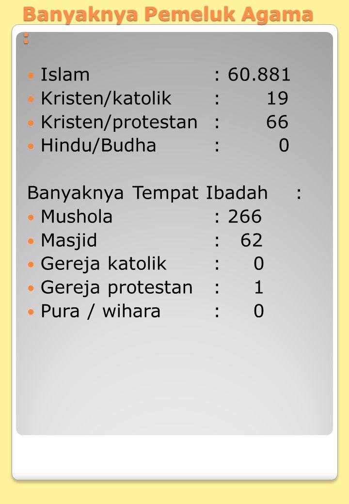 Banyaknya Pemeluk Agama :