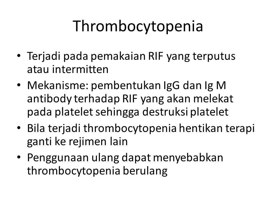 Thrombocytopenia Terjadi pada pemakaian RIF yang terputus atau intermitten.