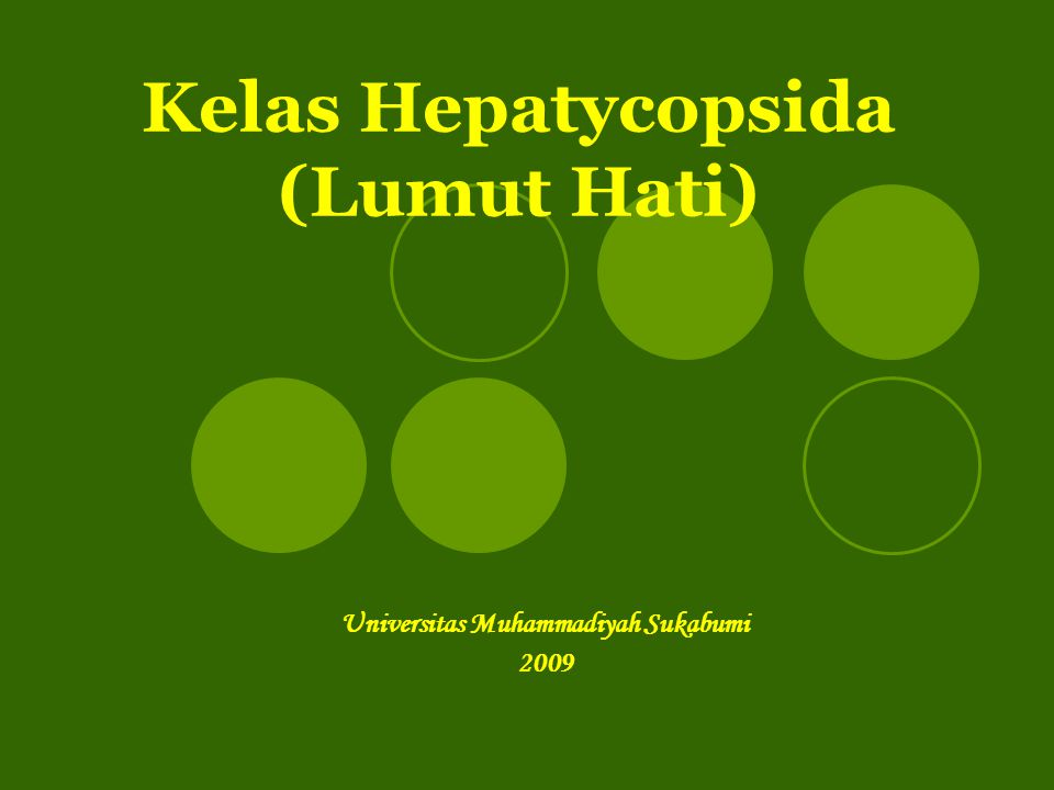 Kelas Hepatycopsida (Lumut Hati)