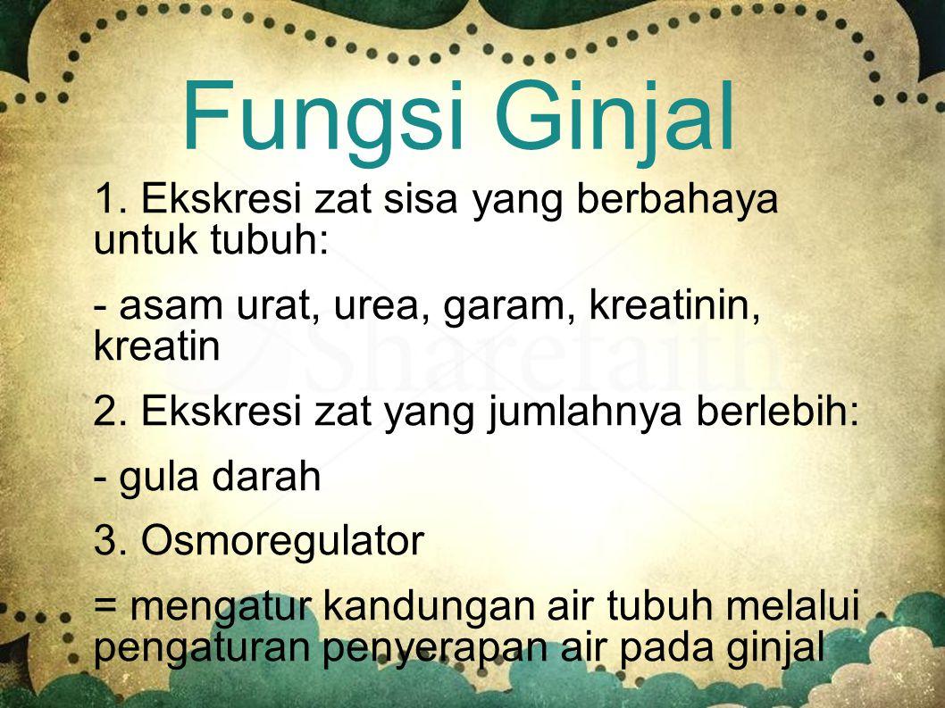 Fungsi Ginjal 1. Ekskresi zat sisa yang berbahaya untuk tubuh: