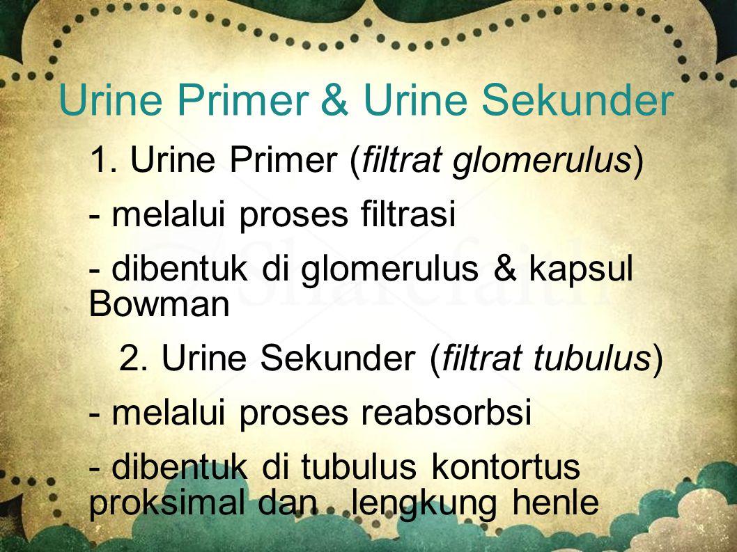 Urine Primer & Urine Sekunder