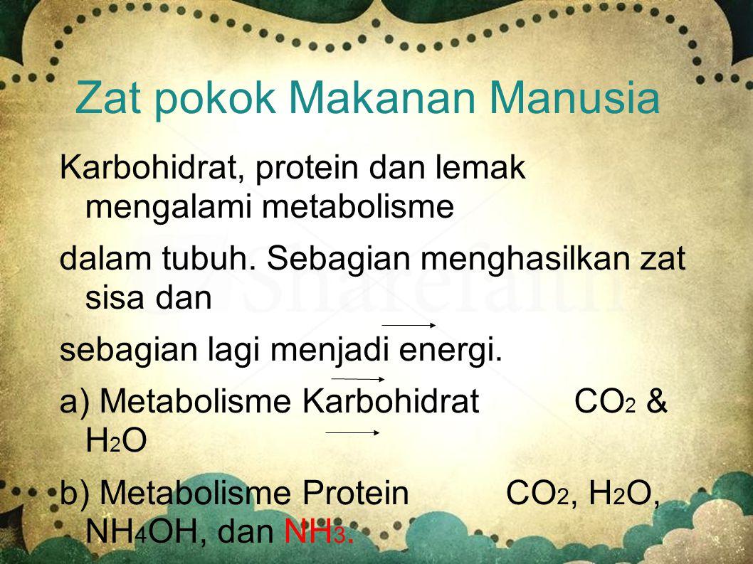 Zat pokok Makanan Manusia