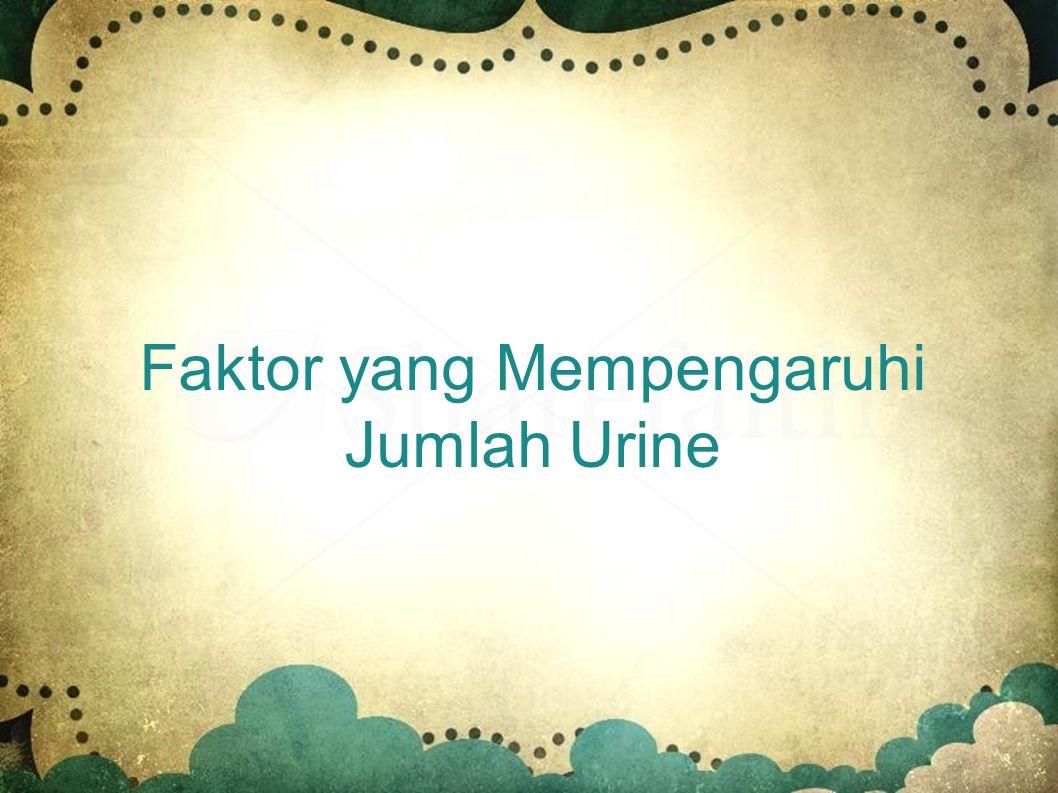 Faktor yang Mempengaruhi Jumlah Urine