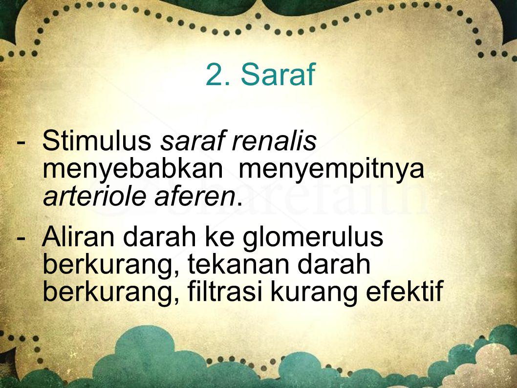 2. Saraf - Stimulus saraf renalis menyebabkan menyempitnya arteriole aferen.