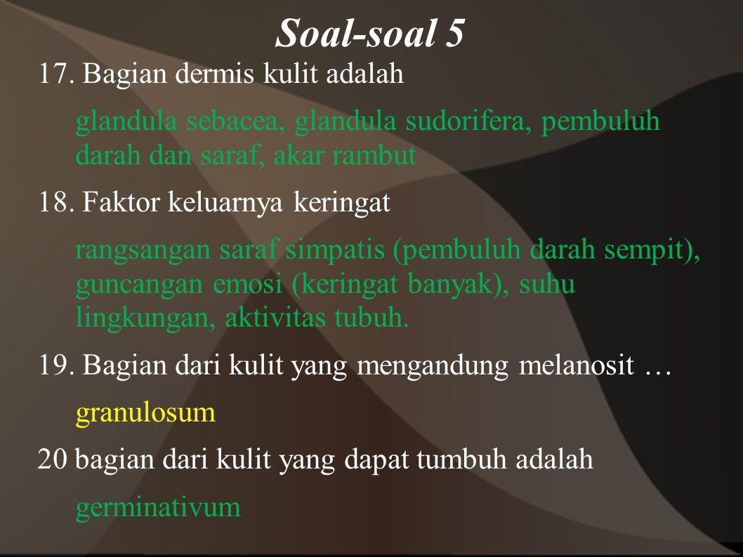 Soal-soal 5
