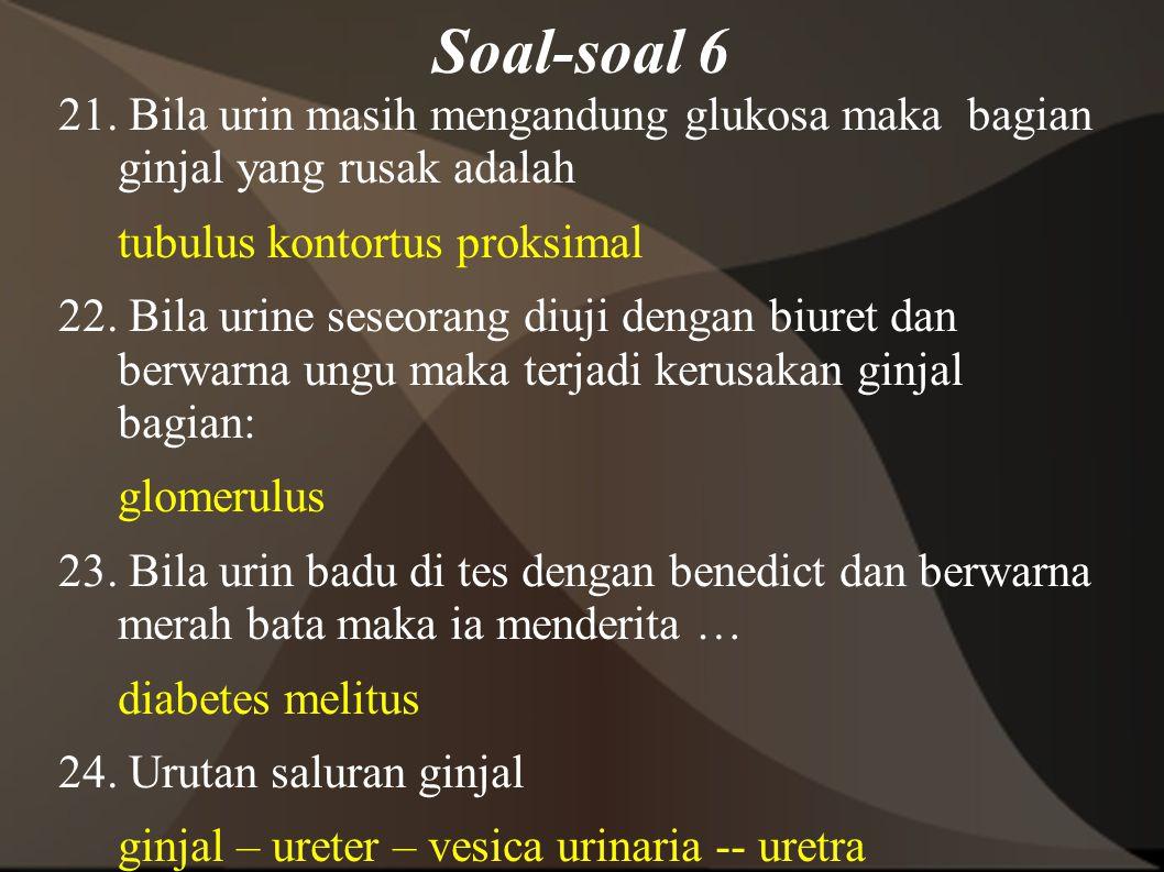 Soal-soal 6