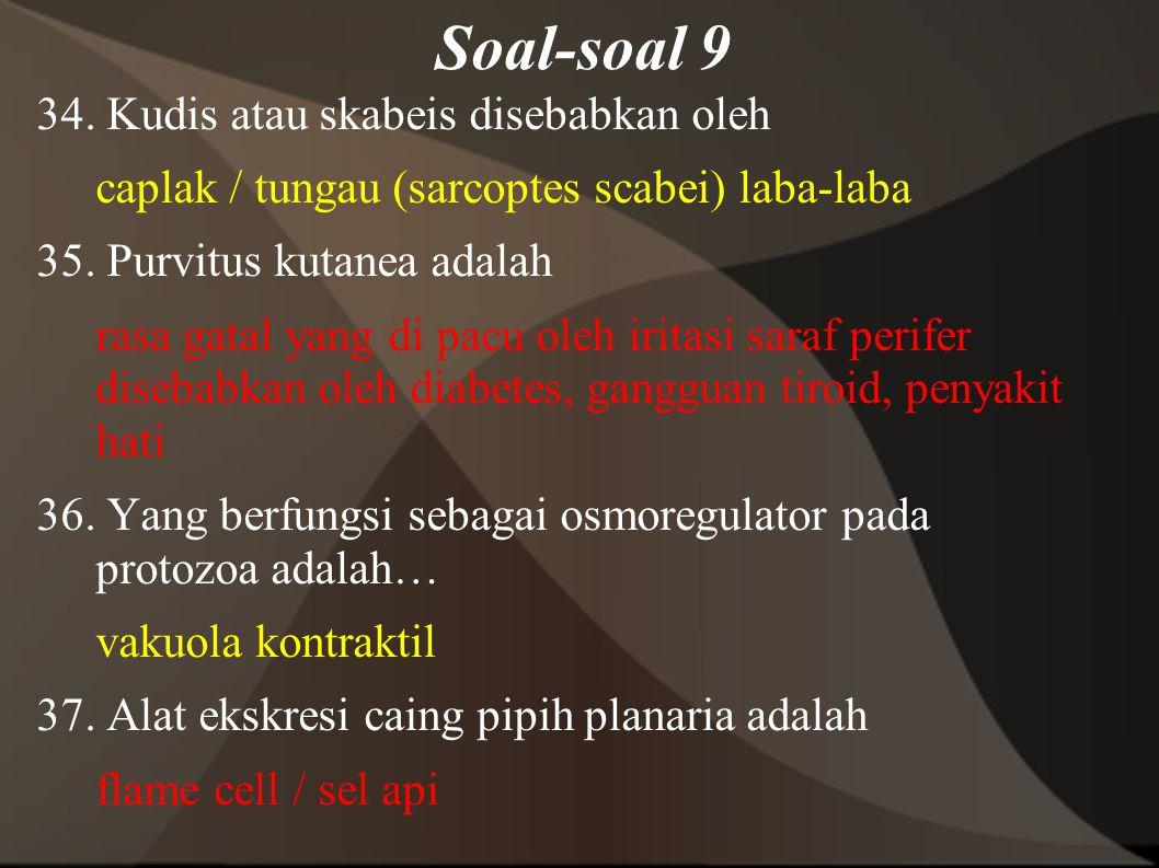 Soal-soal 9
