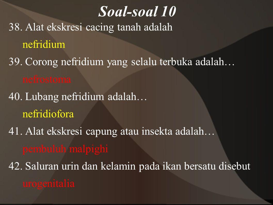 Soal-soal 10