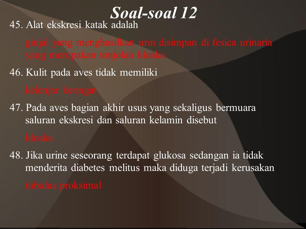 Soal-soal 12