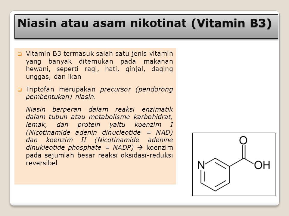 Niasin atau asam nikotinat (Vitamin B3)