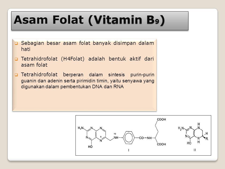 Asam Folat (Vitamin B9) Sebagian besar asam folat banyak disimpan dalam hati. Tetrahidrofolat (H4Folat) adalah bentuk aktif dari asam folat.