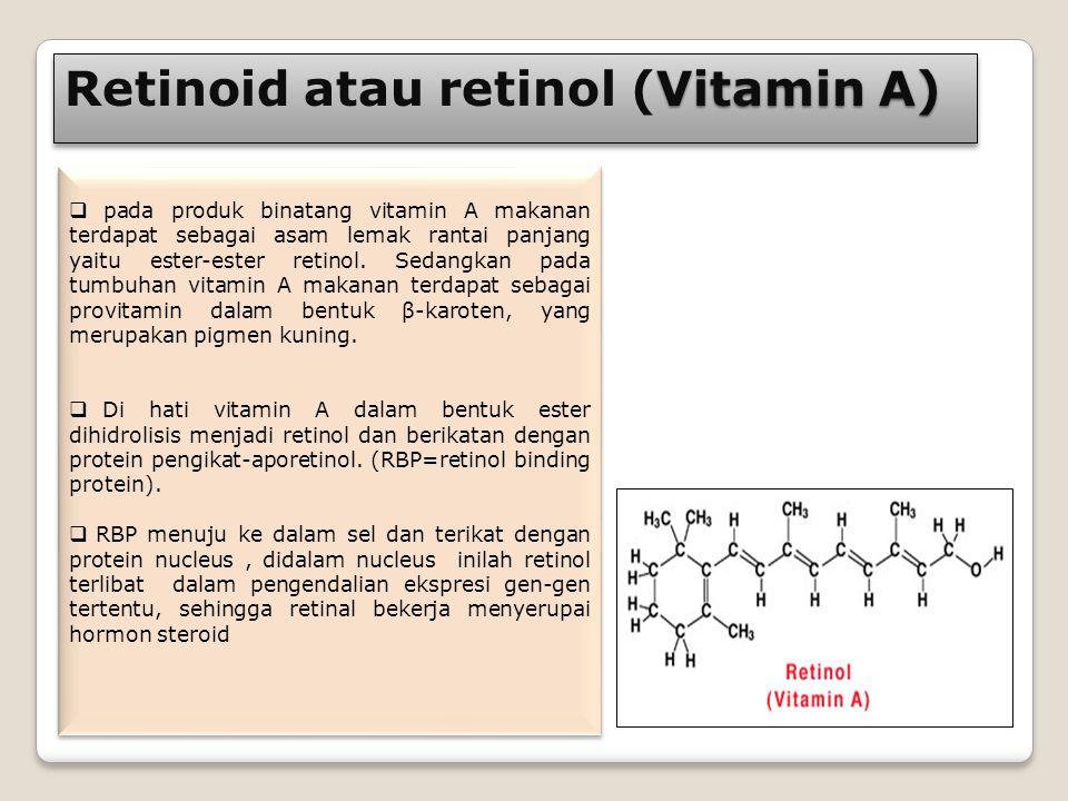 Retinoid atau retinol (Vitamin A)