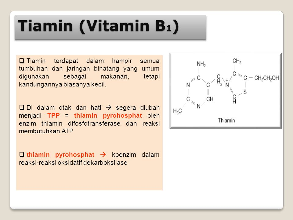 Tiamin (Vitamin B1)