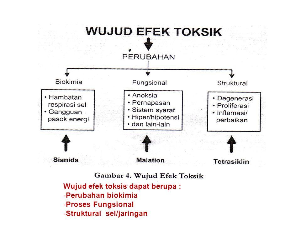 Wujud efek toksis dapat berupa :