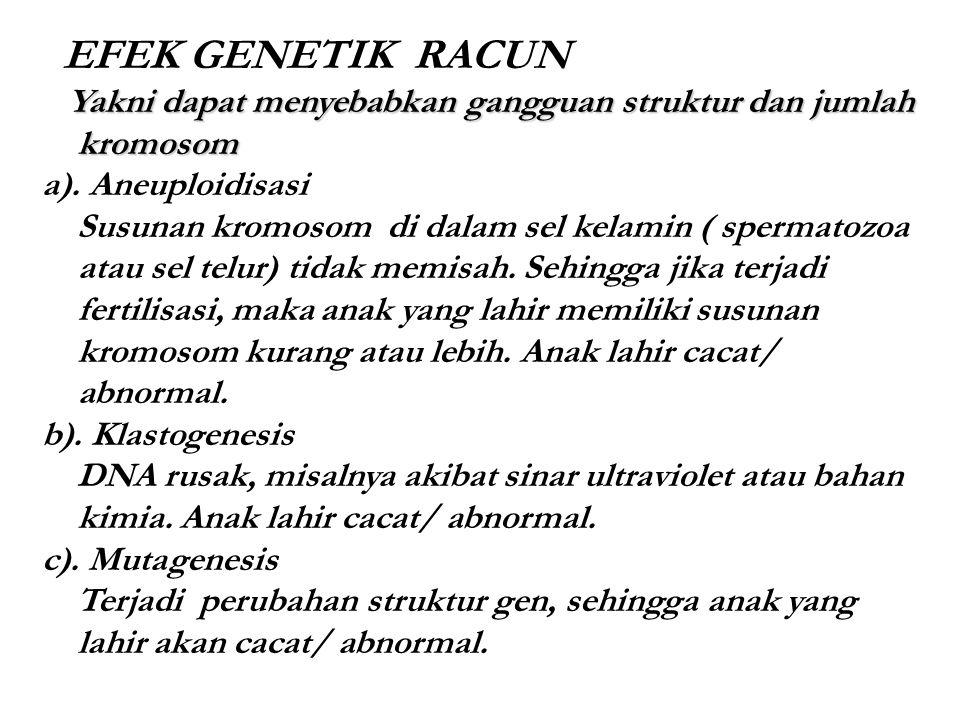 EFEK GENETIK RACUN Yakni dapat menyebabkan gangguan struktur dan jumlah kromosom. a). Aneuploidisasi.