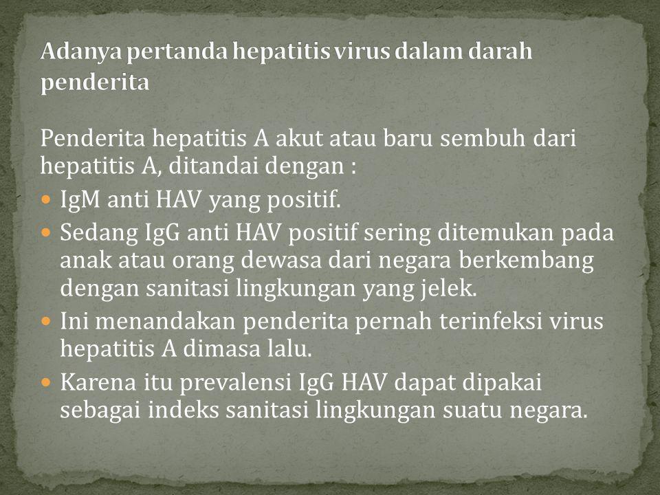 Adanya pertanda hepatitis virus dalam darah penderita