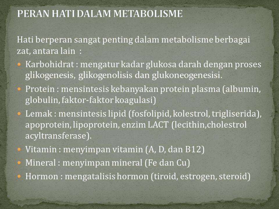PERAN HATI DALAM METABOLISME