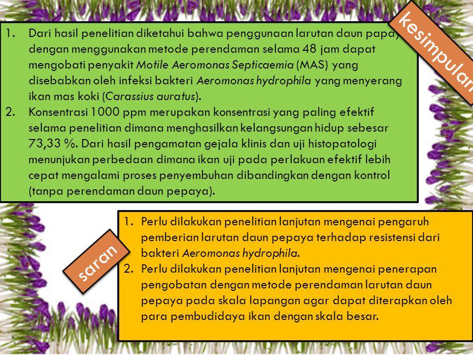 Dari hasil penelitian diketahui bahwa penggunaan larutan daun papaya dengan menggunakan metode perendaman selama 48 jam dapat mengobati penyakit Motile Aeromonas Septicaemia (MAS) yang disebabkan oleh infeksi bakteri Aeromonas hydrophila yang menyerang ikan mas koki (Carassius auratus).