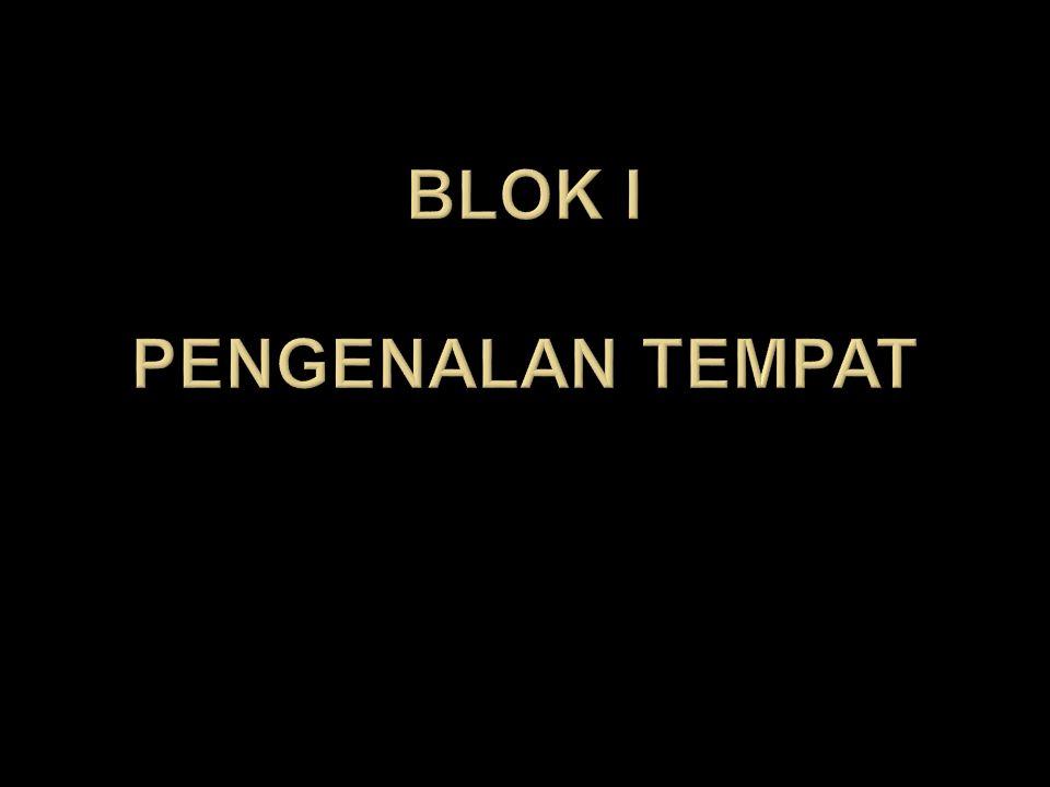 Blok i pengenalan tempat