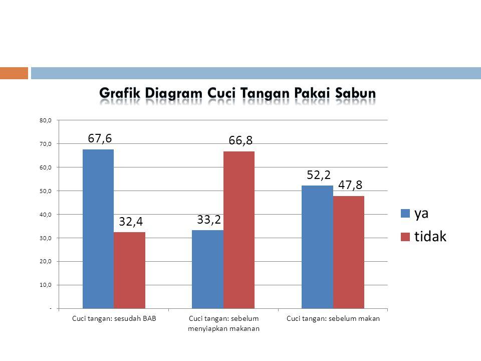 Grafik Diagram Cuci Tangan Pakai Sabun