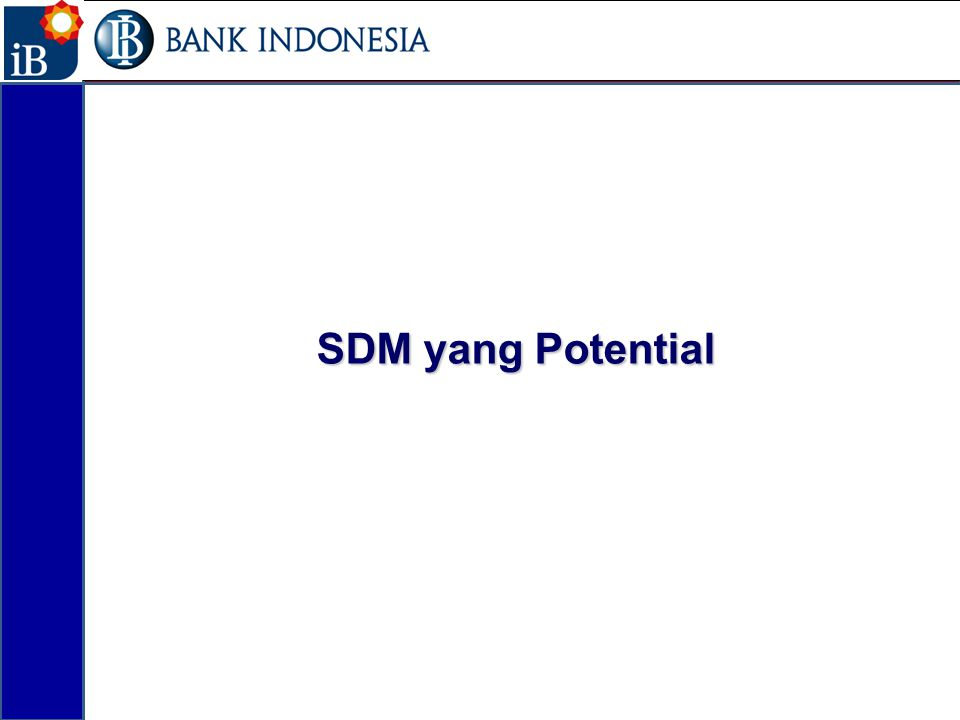 17 SDM yang Potential