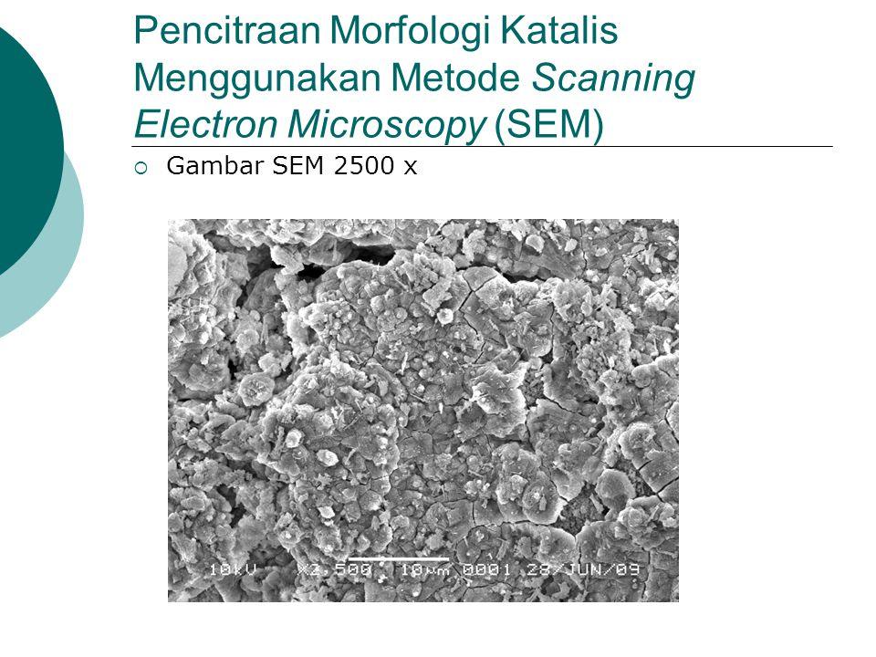 Pencitraan Morfologi Katalis Menggunakan Metode Scanning Electron Microscopy (SEM)