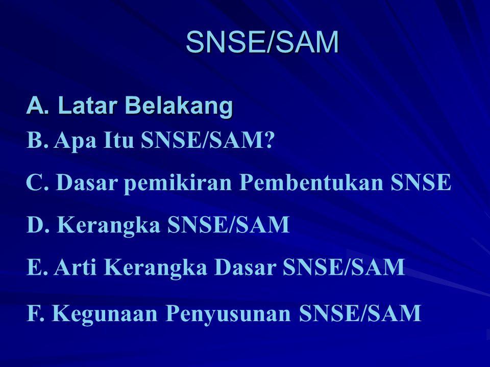 SNSE/SAM A. Latar Belakang B. Apa Itu SNSE/SAM