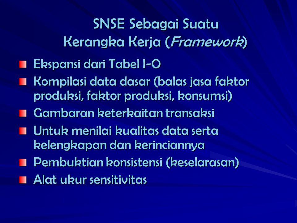 SNSE Sebagai Suatu Kerangka Kerja (Framework)