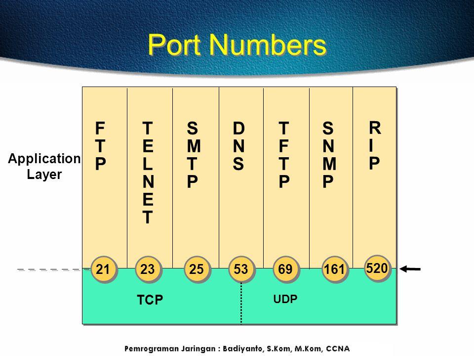 Port Numbers F T P T E L N E T S M T P D N S T F T P S N M P R I P