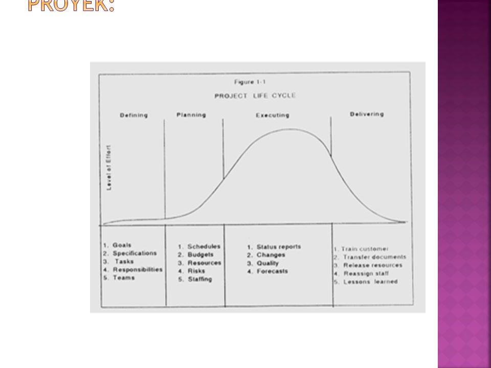 Contoh gambaran siklus hidup proyek: