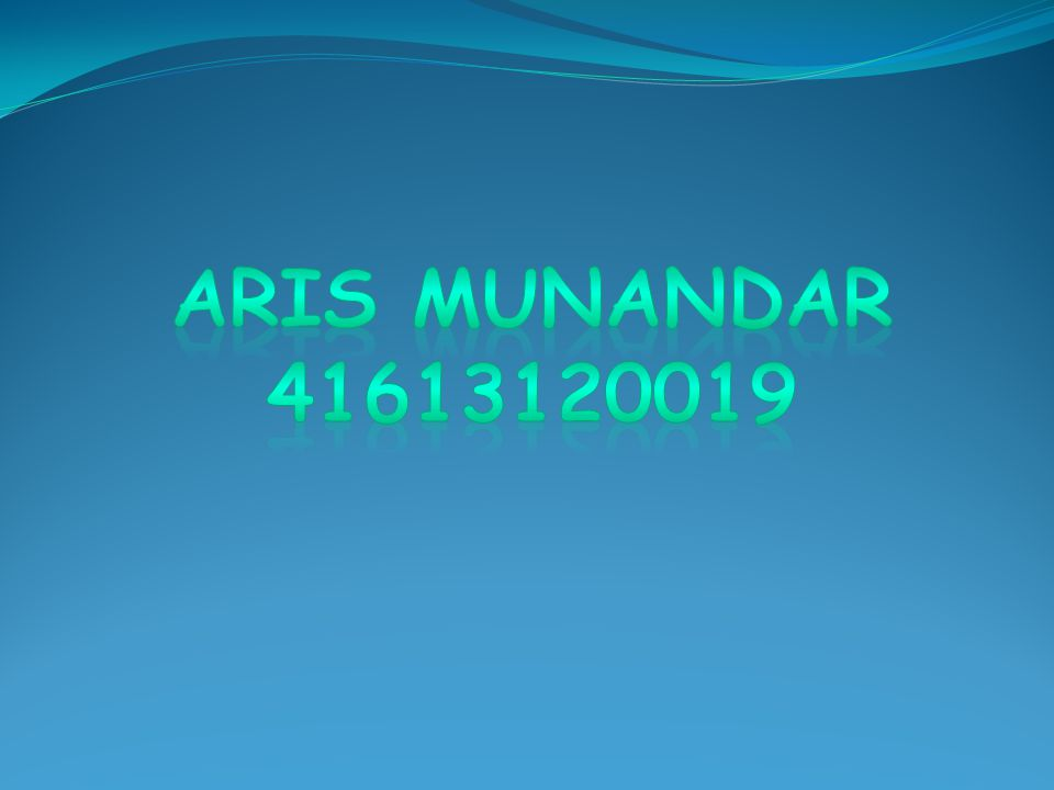 Aris munandar 41613120019