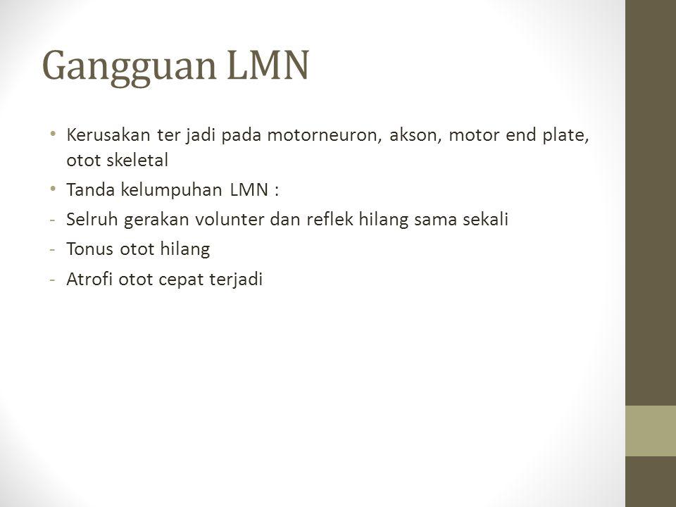 Gangguan LMN Kerusakan ter jadi pada motorneuron, akson, motor end plate, otot skeletal. Tanda kelumpuhan LMN :