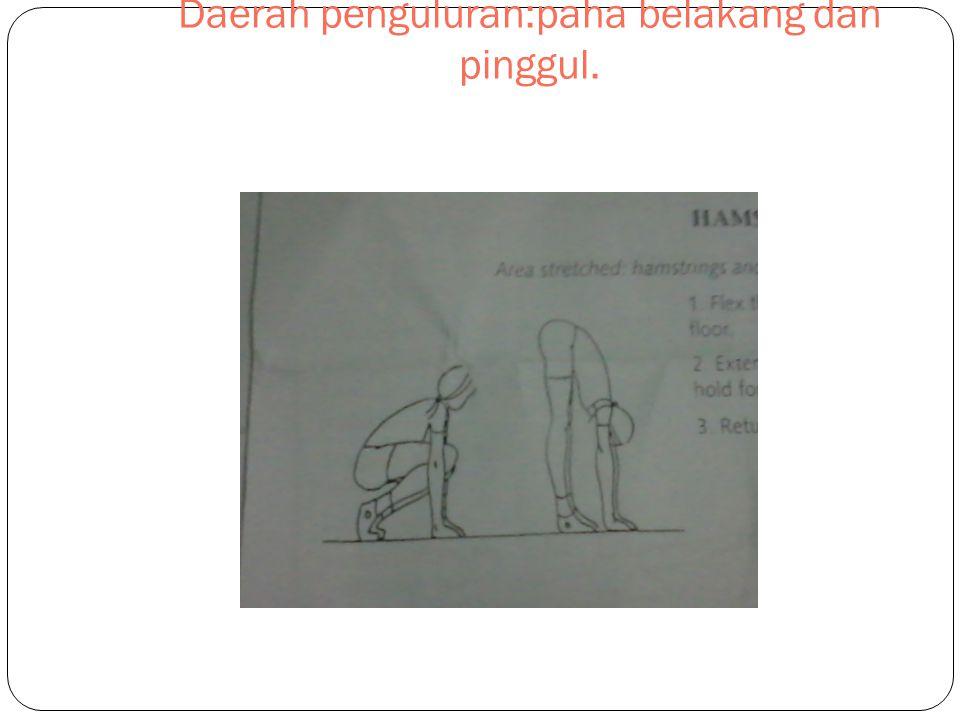 PEREGANGAN URAT LUTUT Daerah penguluran:paha belakang dan pinggul.