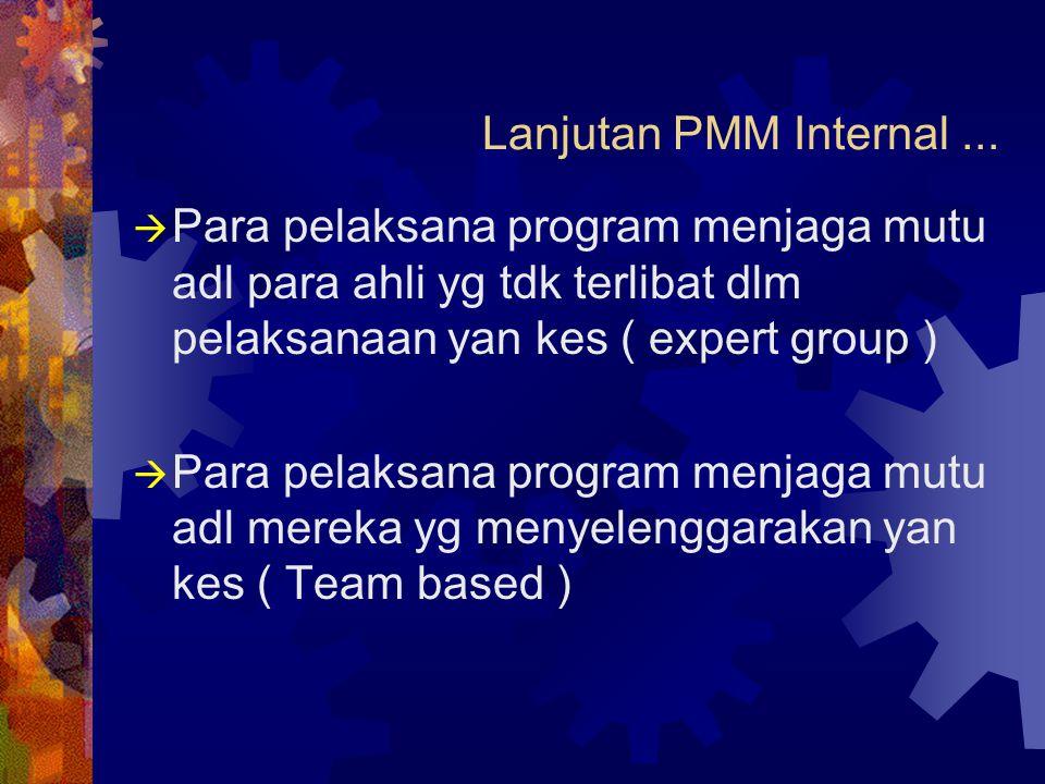 Lanjutan PMM Internal ... Para pelaksana program menjaga mutu adl para ahli yg tdk terlibat dlm pelaksanaan yan kes ( expert group )