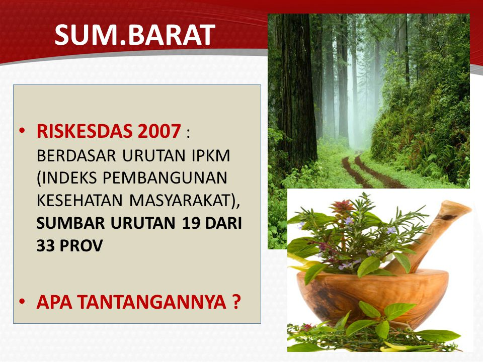 SUM.BARAT RISKESDAS 2007 : BERDASAR URUTAN IPKM (INDEKS PEMBANGUNAN KESEHATAN MASYARAKAT), SUMBAR URUTAN 19 DARI 33 PROV.