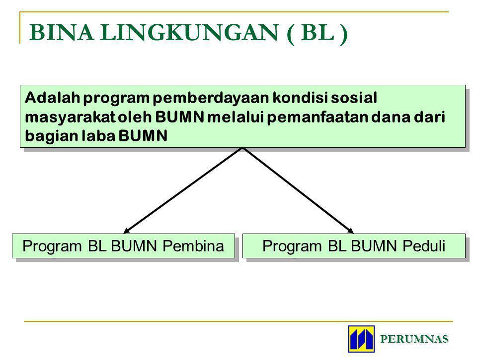 Program BL BUMN Pembina