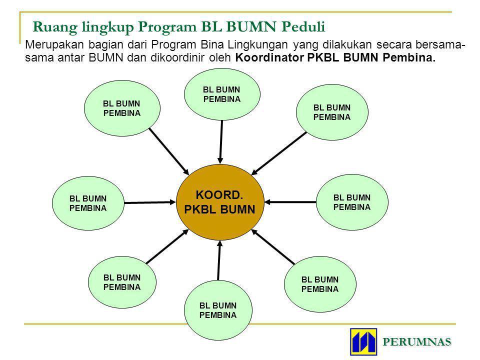 Ruang lingkup Program BL BUMN Peduli