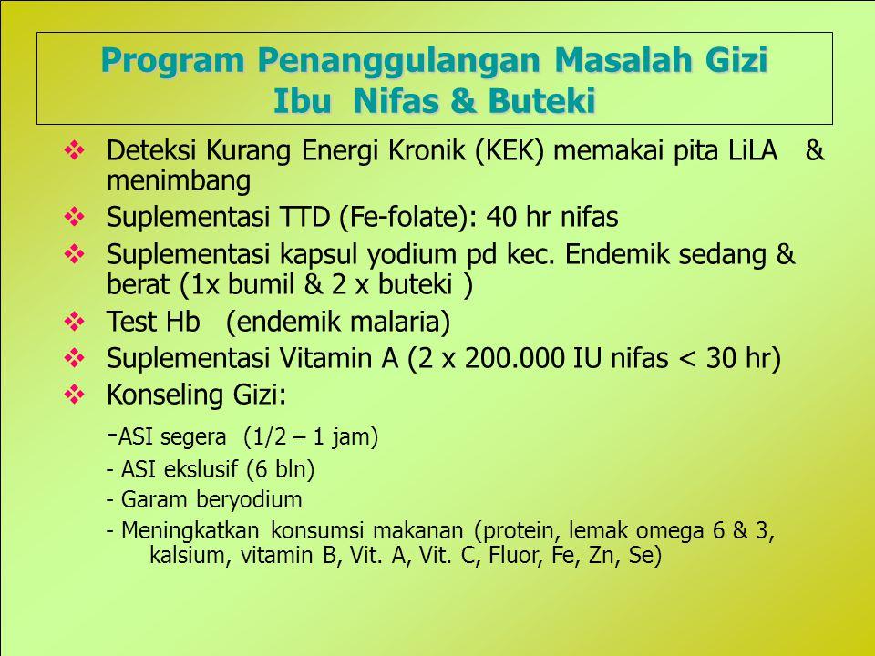 Program Penanggulangan Masalah Gizi
